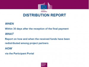 21_DISTRIBUITION REPORT