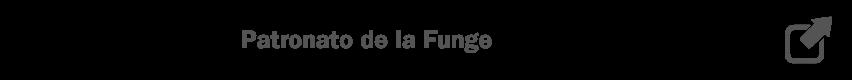 Patronato de Gobierno de la Fundación General de la Universidad de Valladolid