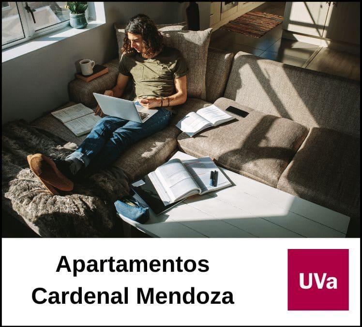 Apartamentos Cardenal Mendoza - web intermedia